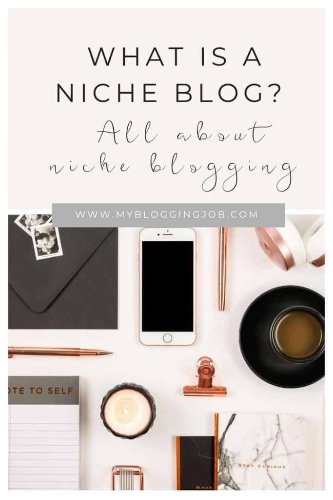 What is a niche blog 02
